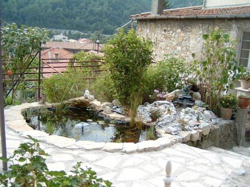 Construction de bassin de jardin - Construction bassin de jardin ...