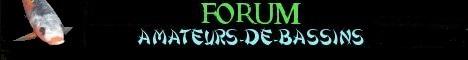 Forum bassin