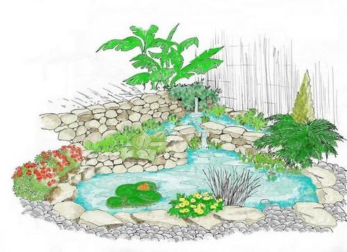 Dessins de bassins - Bassin japonais dessin dijon ...